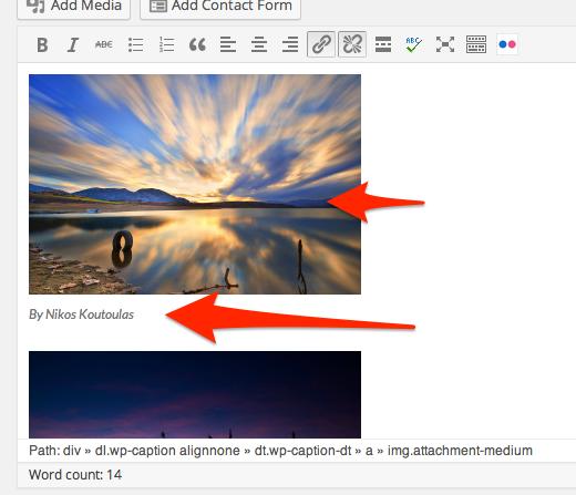 Edit_Post_‹_Flickr_Suckr_Demo_Site_—_WordPress