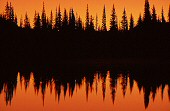Trees and lake at sunset, Mt. Rainier, photograph copyright Brent VanFossen not for use without permission