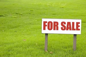 Auction-For-Sale