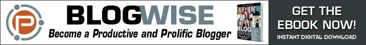 Blogwise ebook review
