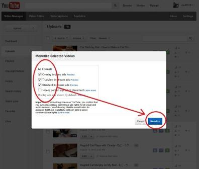 Blue Monetize Button