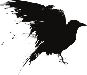 Black crow silhouette