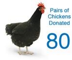 Chickens-80-1